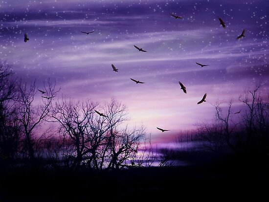 Purple Haze by Elizabeth Burton