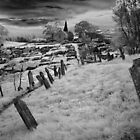Graveyard by Andrew Dickman