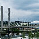 Tacoma Dome and SR 509 Bridge by Julia Washburn
