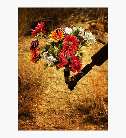 Beauty In The Midst Photographic Print