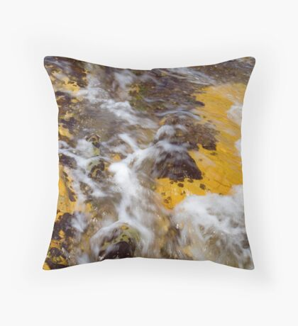 Ham & Eggs Throw Pillow