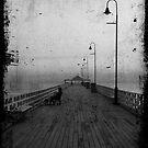 Fishing Alone by Liza Yorkston
