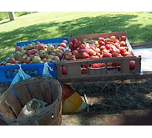 Roadside Apple Stand Photographic Print