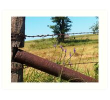 Barbed Wire Beauty Art Print