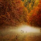 autumn mist by Stankina
