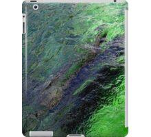 Seal pool iPad Case/Skin