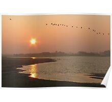 """Sunrise over """"Tureluur"""" Poster"""