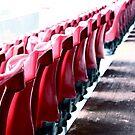 Clean stadium seats by Paul Van Lierop