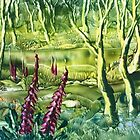 WI woodland by Barry Moulton