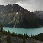 Peyto Lake by Claire Armistead