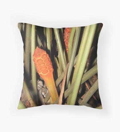 Zamia amblyphyllidia Throw Pillow