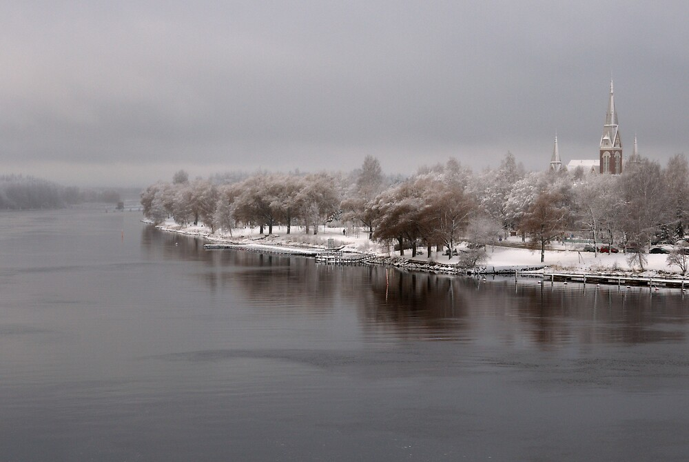 .early nordic winter by Pentti