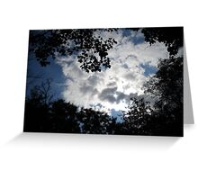 great sky  and wonderful trees Greeting Card