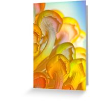 Rainbow Illumination Greeting Card