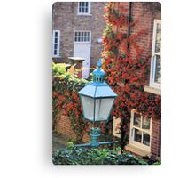 Blue lamp and red Berries Canvas Print