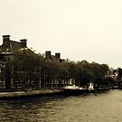 Ellis Island by Tracy Persson