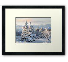 First Light on Last Night's Snow Framed Print
