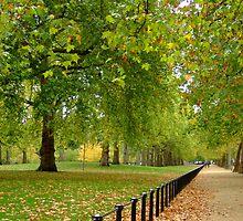 St James's Park, Autumn by Themis