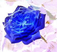 Electric Blue Rose by WildestArt