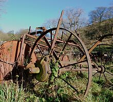 Old haymaking machine Malham by Margaret Brown