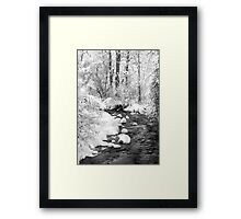Gallatin Valley Creek Framed Print