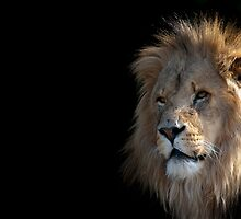 King of the Darkness by Nigel Wheal