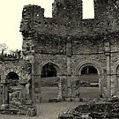 Lavado at Mellifont Abbey. Co, Louth. Ireland. by Finbarr Reilly