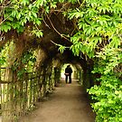 Les amoureux sous les arbres by Amy Hale