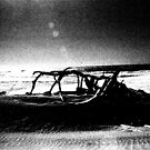 Driftwood Carcass by Beyondwords