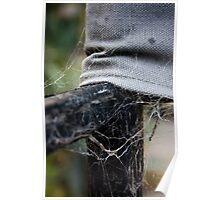 Interwoven Webs Poster