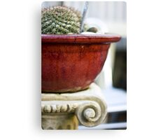 Feeling Cactus Canvas Print