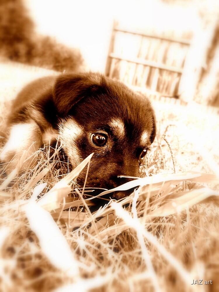 Chucky Puppy... by JAZ art