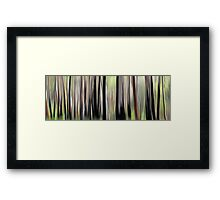 Spring Forest Framed Print