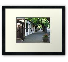 Footpath View Framed Print