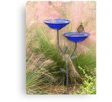 Bird Bath   282 Views Canvas Print