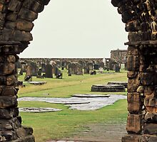 Ruins at St. Andrews, Fife by Ann Marie Donahue