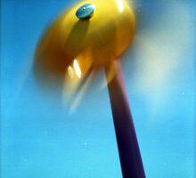 SBTS - pinhole 1 - Spin Wheel by David Amos