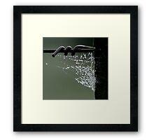 Wire & Web Framed Print