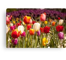 Spring Flowers in Bloom Canvas Print