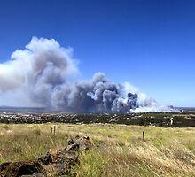 Port Lincoln Fire - January 2009 by Michael Sleep