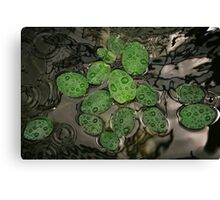 Pond Surface Canvas Print