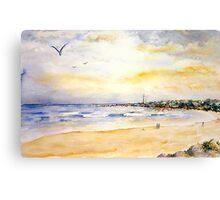 Seal Point - Cape St Francis Canvas Print