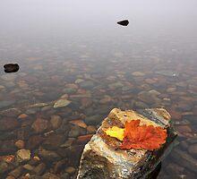 Vanished Loch by Douglas  Latham