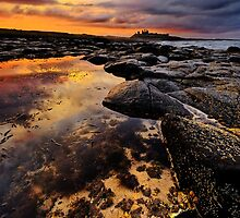 Rockpool near Dunstanburgh Castle in Northumberland by Chris McIlreavy