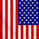 American Flag by Packrat