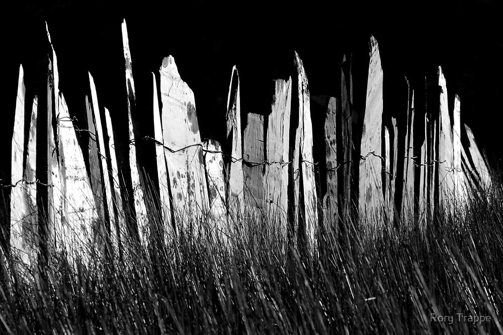 Slate fence by Rory Trappe