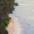 Beach from Above Oahu, Hawaii by BornBarefoot