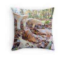 fungi shrooms woodland forage Throw Pillow