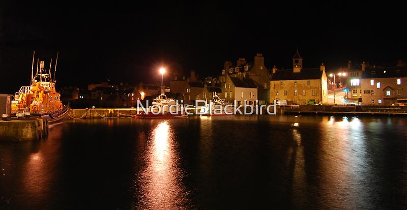northern night in november by NordicBlackbird