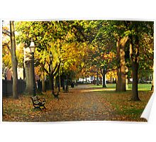Autumn in Salem Commons Poster